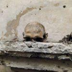 Teschio con le orecchie, le immagini della passeggiata nel centro storico di Napoli [FOTO]
